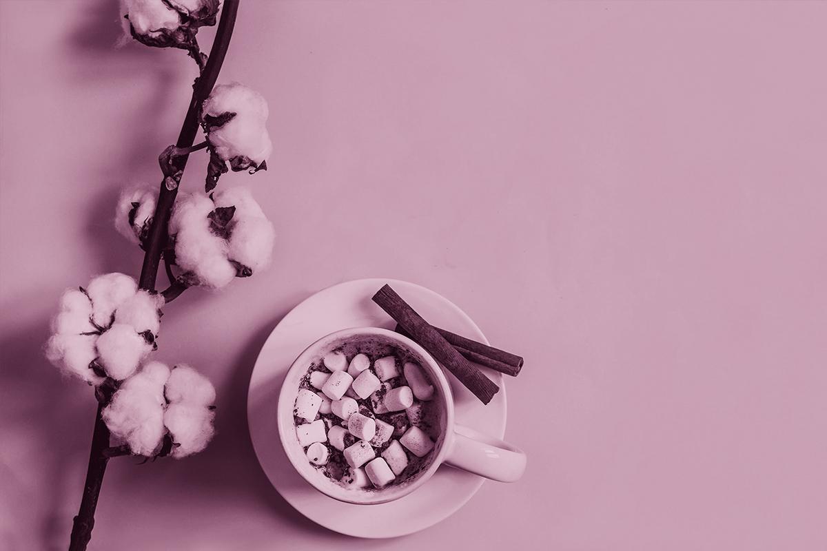Nutrición Menopausia